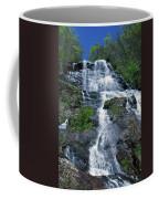 amicalola falls Ga Coffee Mug
