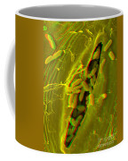 Anaglyph Of Infected Lettuce Leaf Coffee Mug