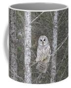 Angel Owl Coffee Mug