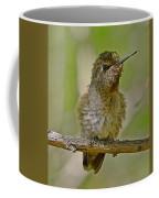 Anna's Perched Coffee Mug