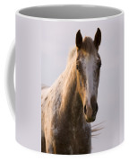 Appaloosa Horse Coffee Mug