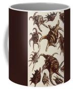 Aquatic Animals - Conch - Shells - Snails Coffee Mug