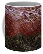 Arbutus Tree Bark Coffee Mug