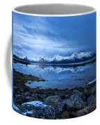 Arctic Reflections Coffee Mug