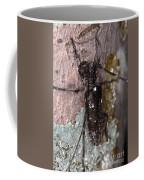 Asian Long-horned Beetle Coffee Mug