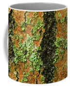 Aspen Bark After The Rain Coffee Mug