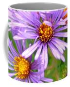 Asters Coffee Mug