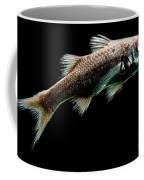 Atlantic Pelagic Basslet Coffee Mug