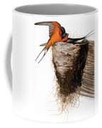 Audubon: Swallow Coffee Mug