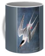 Audubon: Tern Coffee Mug