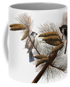 Audubon: Titmouse Coffee Mug