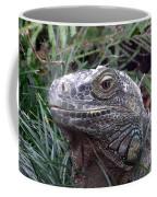 Australia - Kamodo Dragon Coffee Mug