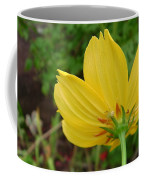 Australia - The Spider Coffee Mug