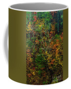 Autumn Hillside Blue Ridge Parkway Coffee Mug
