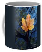 Autumn Leaf On The Water Coffee Mug