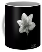 Backside Daffodil Dew Coffee Mug