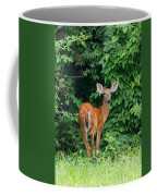 Backyard Deer Coffee Mug