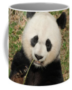 Bamboo Sticking Out Of The Mouth Of A Giant Panda Bear Coffee Mug