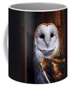 Barn Owl  Coffee Mug by Anthony Jones