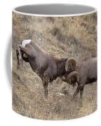 Battering Rams Coffee Mug