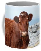 Beautiful Brown Cow On The Burren In Ireland Coffee Mug