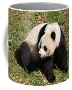 Beautiful Giant Panda Bear In The Wild Coffee Mug