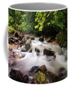 Beautiful Stream In Western Ghats Coffee Mug