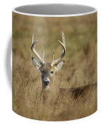 Bedded Buck Coffee Mug