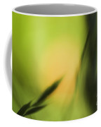 Bibracte-1 Coffee Mug