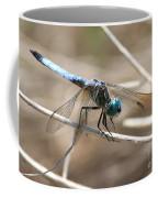 Big Blue Coffee Mug