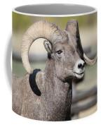 Bighorn Ram Coffee Mug