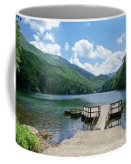 Biogradska Gora Forest  Coffee Mug