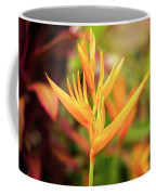 Bird Of Paradise Plant In The Garden. Coffee Mug