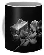 Black And White Orchids Coffee Mug
