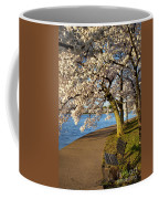 Blossoming Cherry Trees Coffee Mug