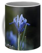 Blue Iris Hermodactyloides Coffee Mug