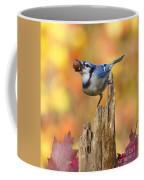 Blue Jay With Acorn Coffee Mug