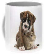 Boxer Puppy And Guinea Pig Coffee Mug