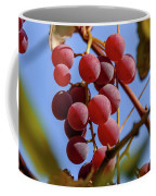 Bunch Of Grapes Coffee Mug