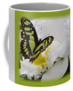 Butterfly On White Coffee Mug