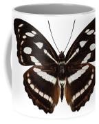 butterfly species Athyma reta moorei Coffee Mug