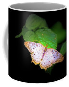 White Peacock Butterfly Wonderland A Series  Coffee Mug