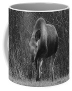 Bw Moose Coffee Mug