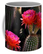 Sonoran Spring Coffee Mug