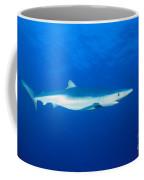 California, Blue Shark Coffee Mug