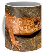 California Giant Salamander Coffee Mug