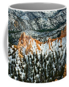 Canyon View Coffee Mug