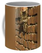 Cat On A Brick Wall Coffee Mug