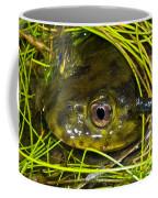 Chilean Widemouth Frog Coffee Mug