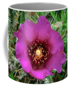 Cholla Cactus Flower Coffee Mug